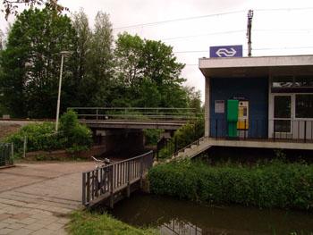 Rotterdam Wilgenplas.